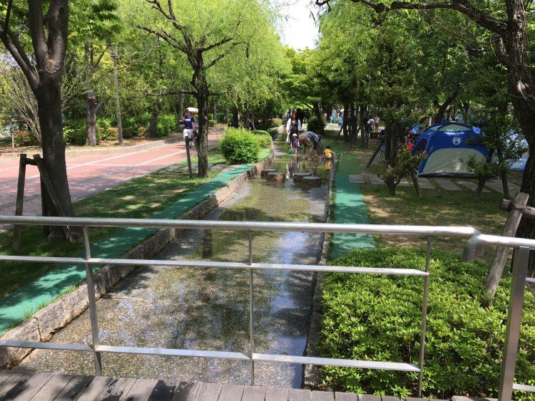 公園 水遊び