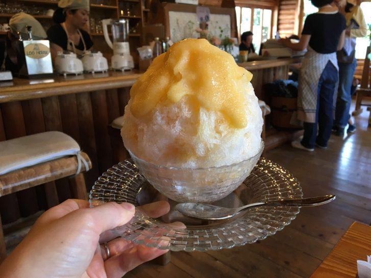 松尾園芸 ログハウス かき氷